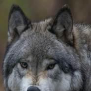 samir_sverige's profile photo
