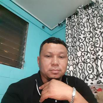 ludiocampo62_Hawaii_Single_Male