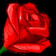 shaikhc1's profile photo
