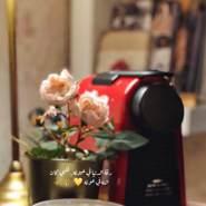 wafaw027's profile photo