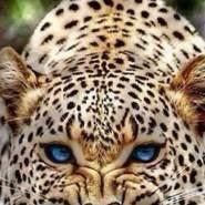 ayouba827's profile photo