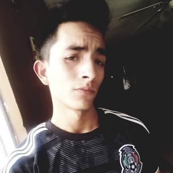 estebanr419_Chihuahua_Single_Male