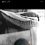 user_jga659's profile photo
