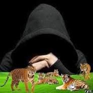 user_hlwit50164's profile photo