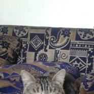 jalala214's profile photo