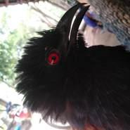 user_xuc4139's profile photo