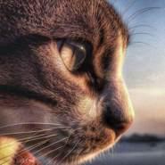 Haaddii11's profile photo