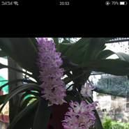 user_pnj80214's profile photo
