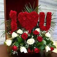 michealvovo38564's profile photo