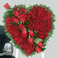 user_ycvei83124's profile photo