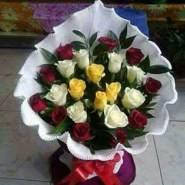 user_ti82590's profile photo