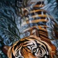 user925540364's profile photo