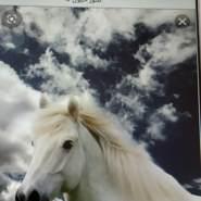 noorh106's profile photo