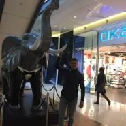 kamtchak's profile photo