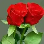 bashirn21's profile photo