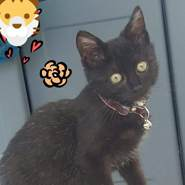 kateg5705's profile photo