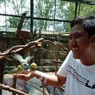 azharuddina11's profile photo