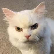 loonarfoot's profile photo
