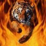 tiger1016's profile photo