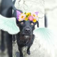 user_ijewn91423's profile photo