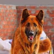 maalyo's profile photo