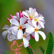 mohamad680234's profile photo
