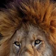 aith021's profile photo