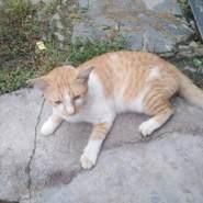 khaik73's profile photo