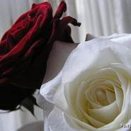 lalal815's profile photo