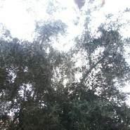 amirra371384's profile photo