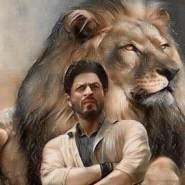 shaden246139's profile photo