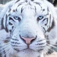vanessah147667's profile photo