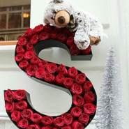 samerz335389's profile photo