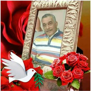 user_hoxy58176_Al Bahr Al Ahmar_โสด_ชาย