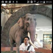 tokhib's profile photo
