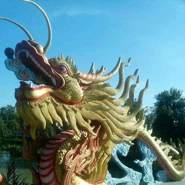 nguyent529312's profile photo