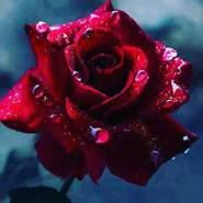 spirit_haven's profile photo