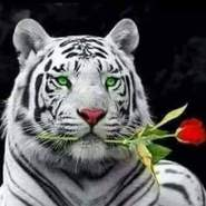 mohamedl678971's profile photo