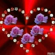 mhmds986229's profile photo