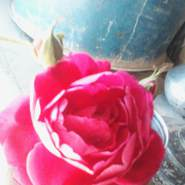 priteepandit's profile photo