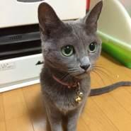 blackj803267's profile photo