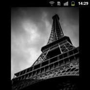 genceli436's profile photo