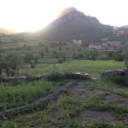 fatimaz647661's profile photo