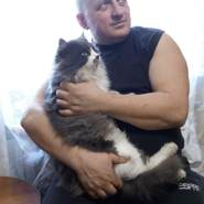 vladimiri853919's profile photo