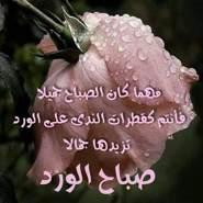 mahmoudh1318's profile photo