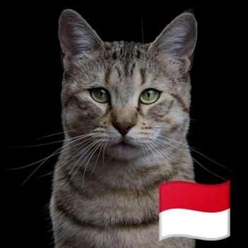 therealls_Jawa Barat_Soltero (a)_Femenino