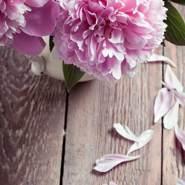 flower_08's profile photo
