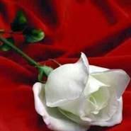 ysra293's profile photo
