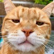 mugisr's profile photo