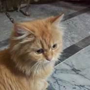 bilal0992's profile photo